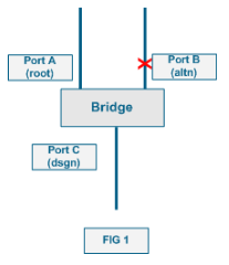 Spanning Tree Port States | NetworkLessons com